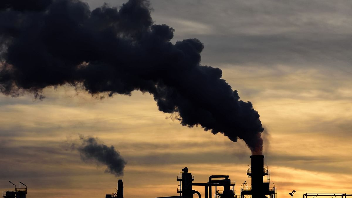 Vital Signs: A Simple Way to Cut Carbon Emissions – Don't Let Polluters Hide