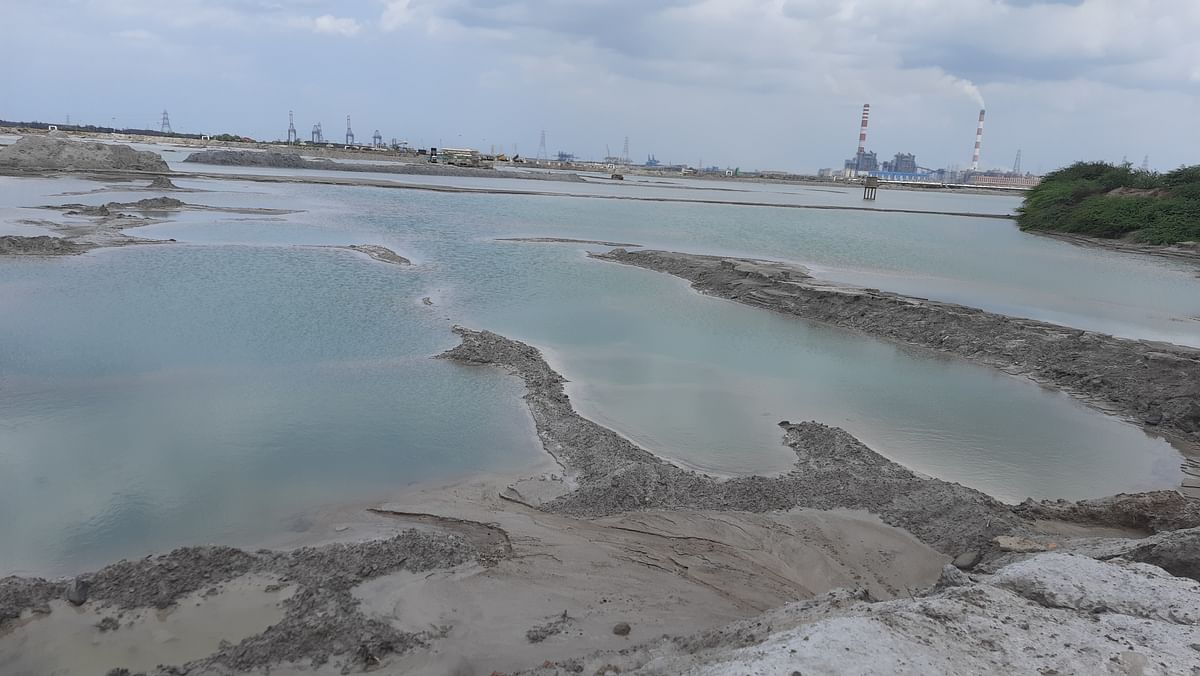 """<div class=""""paragraphs""""><p>These were once agricultural lands in Seppakkam that have now&nbsp;turned into an ash pond filled with poisonous chemicals.</p></div>"""