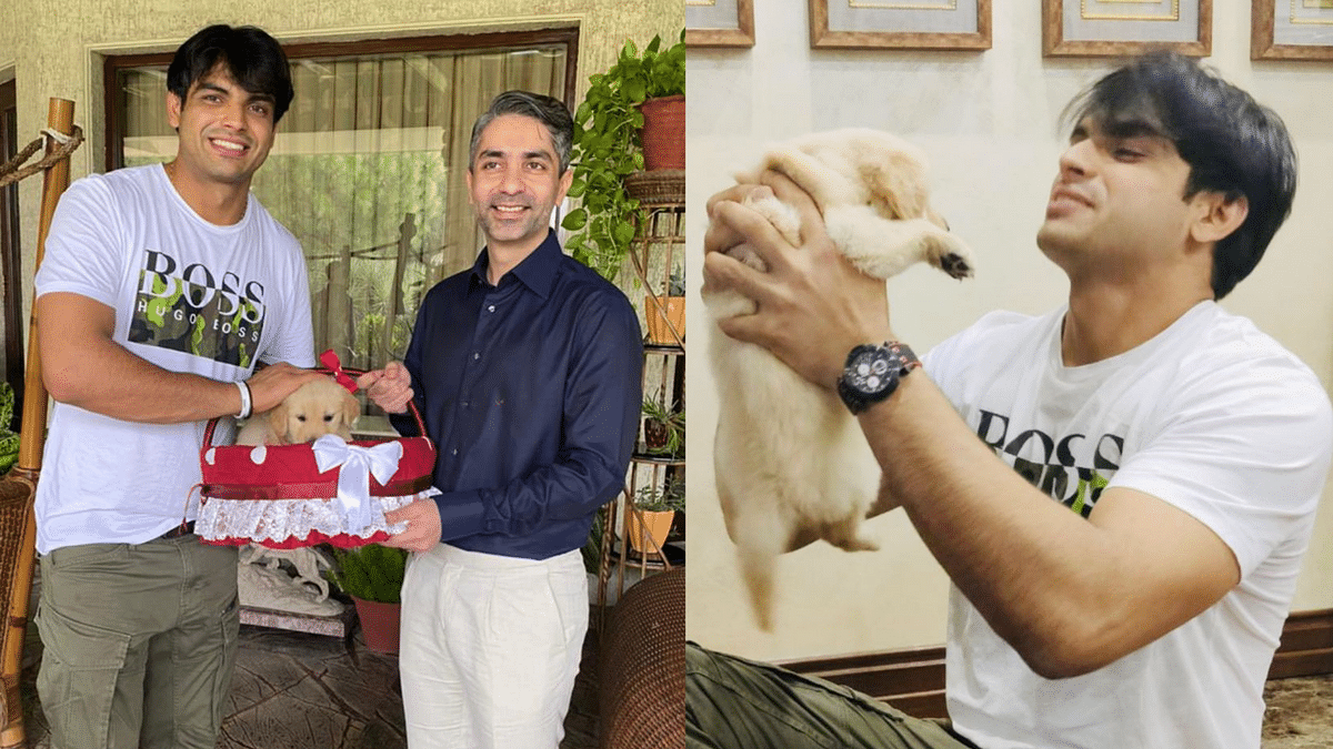 """<div class=""""paragraphs""""><p>India's two individual Olympic gold medallists Abhinav Bindra and Neeraj Chopra met on Wednesday.</p></div>"""