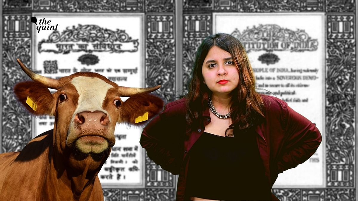 Cow Protection as Fundamental Right of Hindus? Sorry HC! Maybe, Not a Great Call