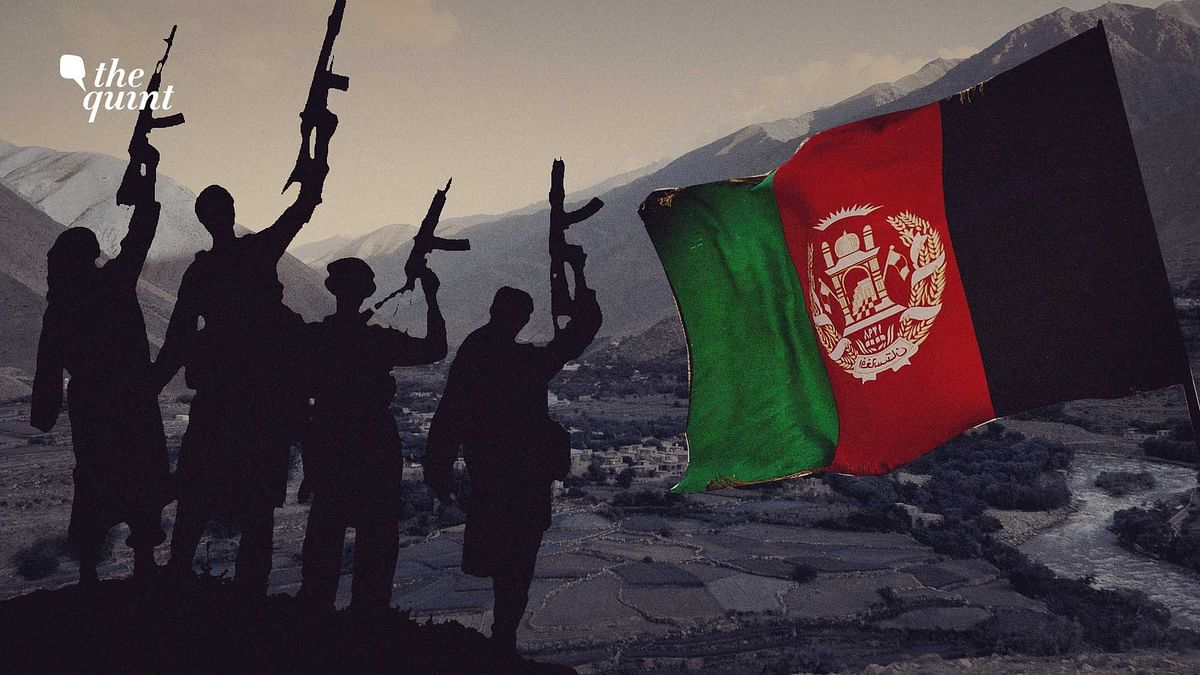 """<div class=""""paragraphs""""><p>The rocky mountainous region has been a long-standing bastion of anti-Taliban agitation for decades.</p></div>"""