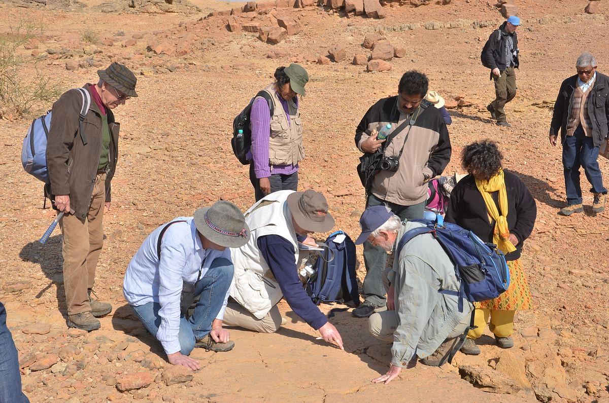 Rare Dinosaur Footprints Suspected Stolen from Rajasthan's Jaisalmer