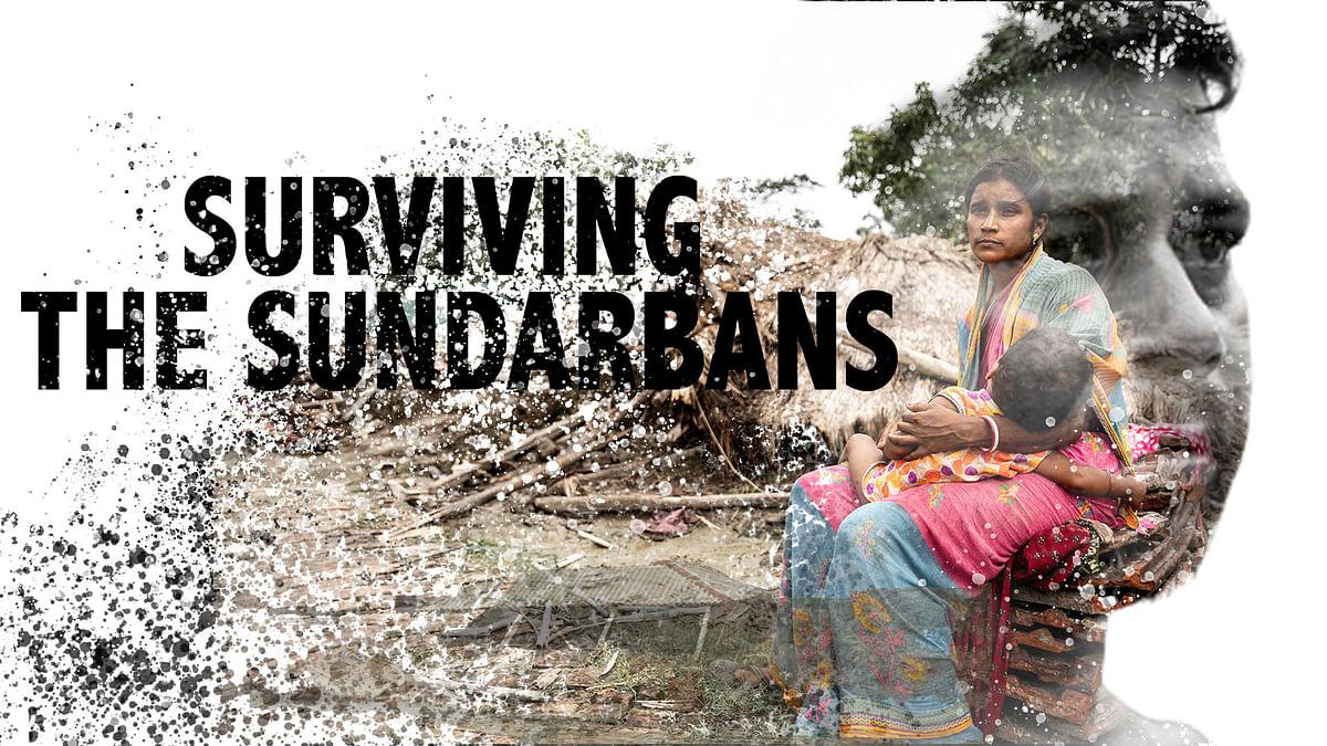 """<div class=""""paragraphs""""><p>Surviving the Sundarbans</p></div>"""