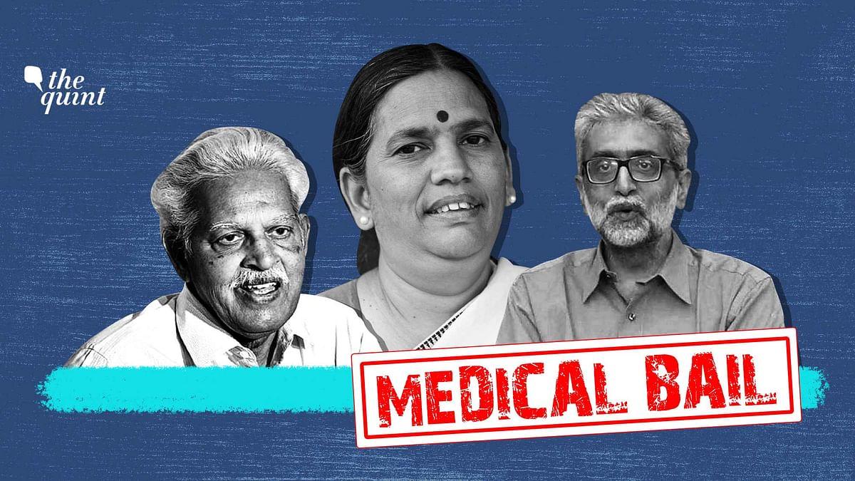 """<div class=""""paragraphs""""><p>Bhima Koregaon accused Varavara Rao, Sudha Bhardwaj and Gautam Navlakha have all sought medical bail.</p></div>"""