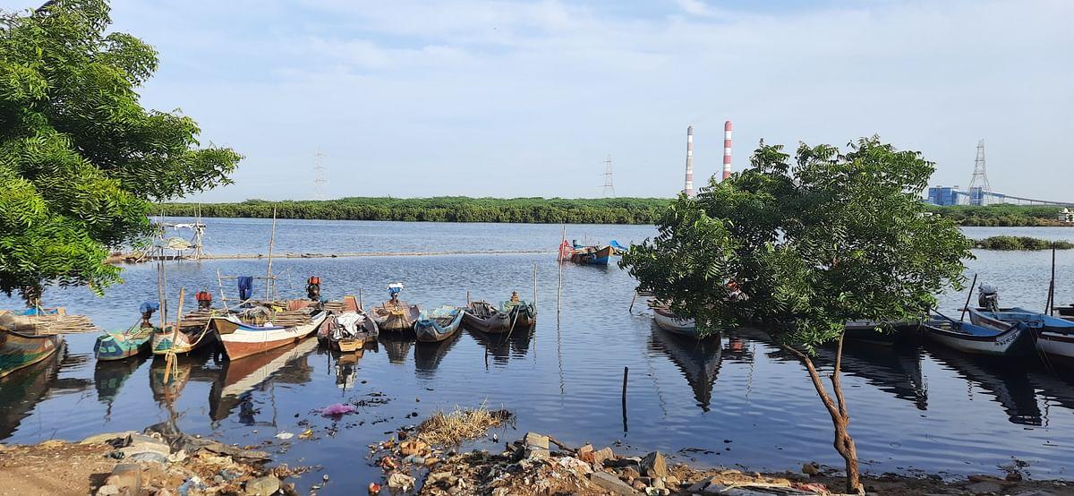 "<div class=""paragraphs""><p>Konamudukku in the Kosasthlaiyar river, close to Kattukuppam village, has the richest marine biodiversity in the area.</p></div>"