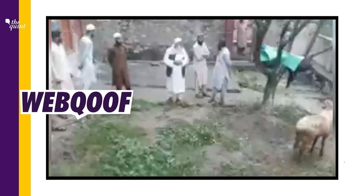 """<div class=""""paragraphs""""><p>Social media users falsely claimed that the man seen in the viral video is a Kashmiri Pandit objecting to the slaughtering of a cow.</p></div>"""