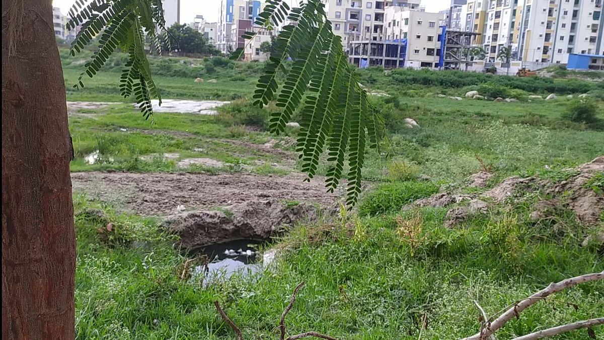 """<div class=""""paragraphs""""><p>The outlet of the sewage pipe makes puddles of dirty water outside Pochaiya's house.</p></div>"""