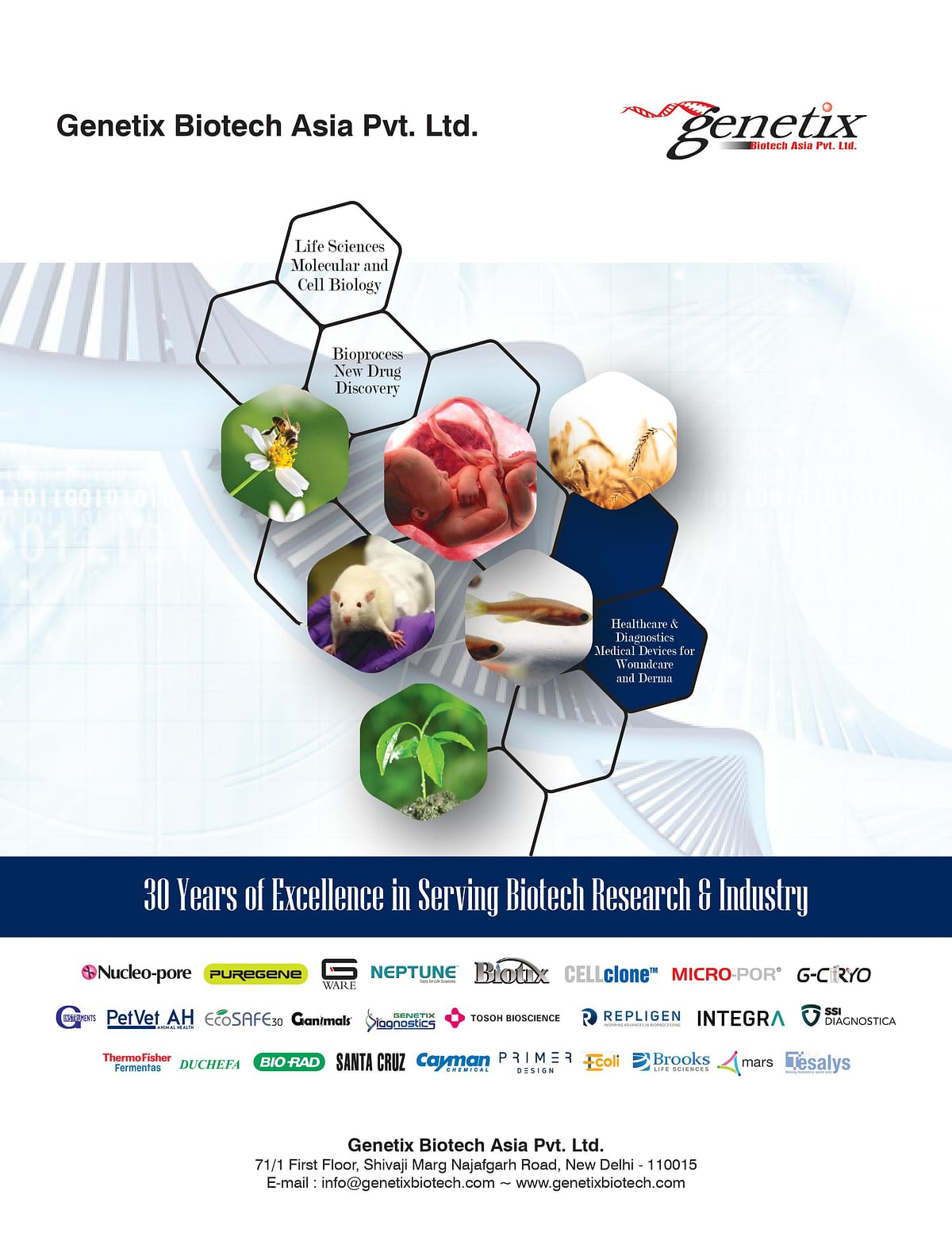 With 30 Years of Excellence in Biotech Research, Genetix Leads The Way