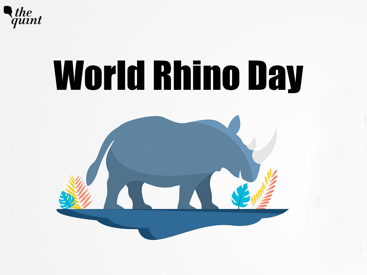 """<div class=""""paragraphs""""><p>World Rhino Day is celebrated every year on 22 September.</p></div>"""