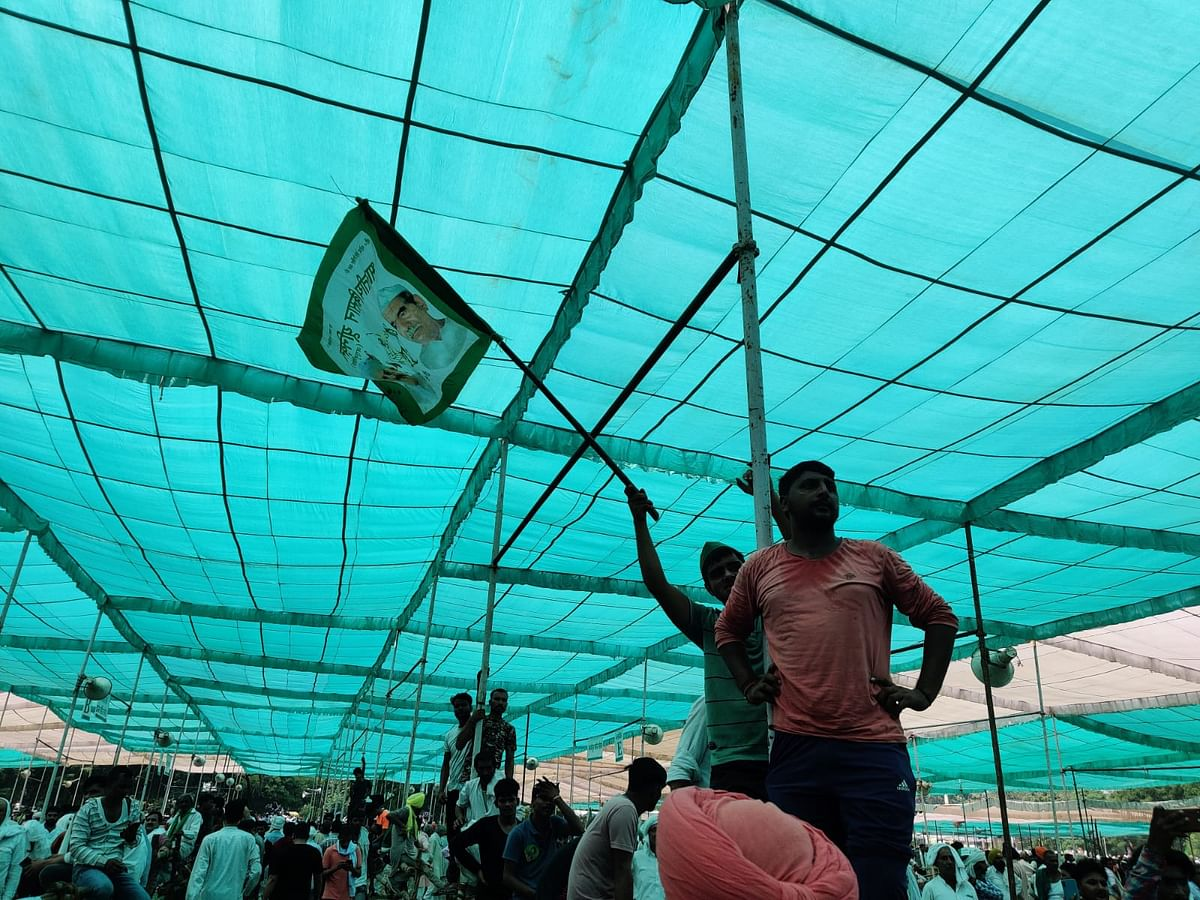 """<div class=""""paragraphs""""><p>Farmers climb polls to see the farmer leaders on the stage better.</p></div>"""