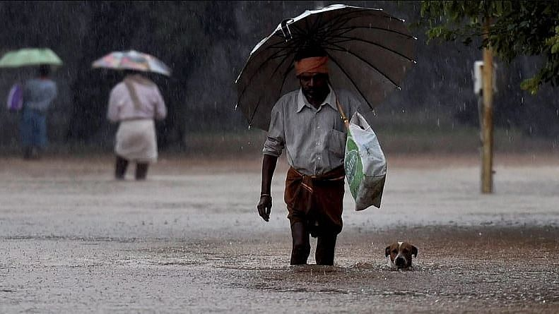 """<div class=""""paragraphs""""><p>Extremely heavy rainfall events over the last two monsoon periods may have led to a perception that India's summer monsoon rainfall has increased, but it has in fact decreased by 6 percent over the past 60 years.</p><p>Photo used for representation only.</p></div>"""