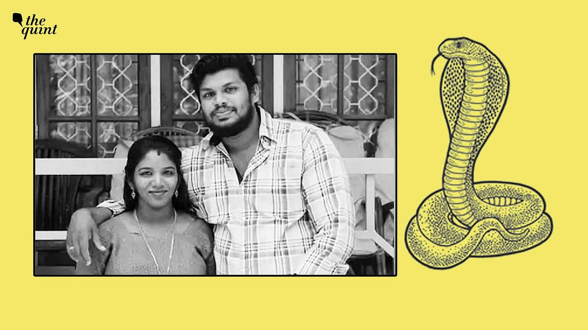 """<div class=""""paragraphs""""><p>Sooraj S Kumar, husband of 25-year-old Uthra, was convicted of using a snake to kill his wife.&nbsp;</p></div>"""