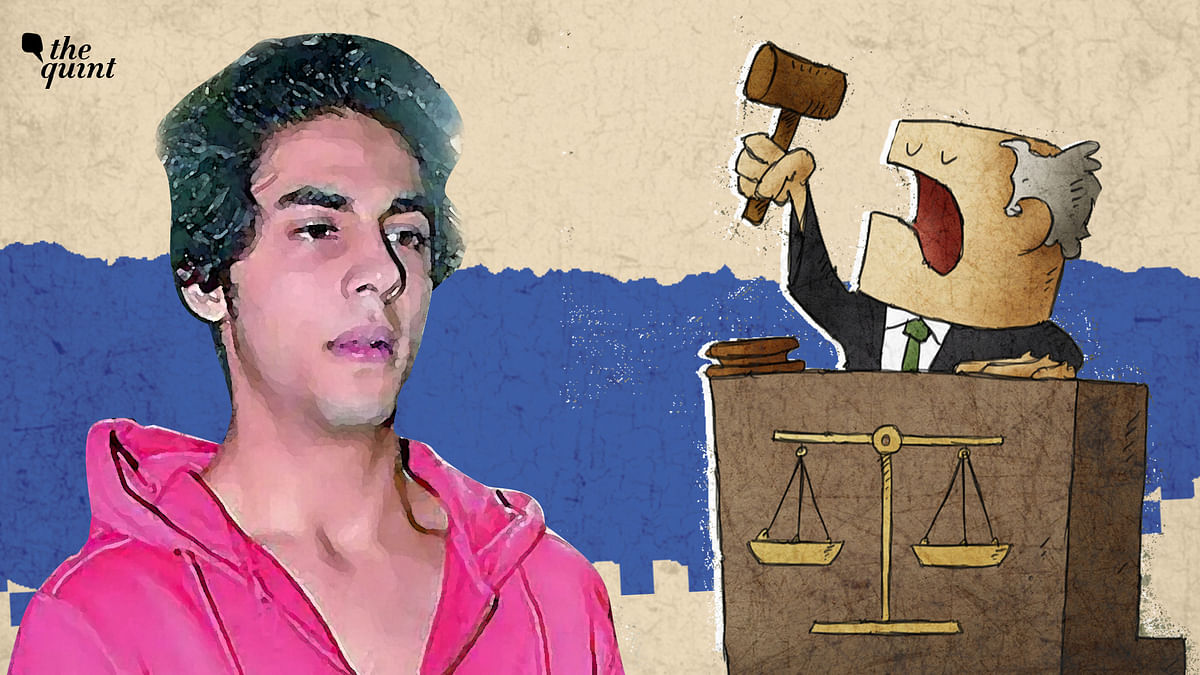 """<div class=""""paragraphs""""><p>Aryan Khan was denied bail by the special NDPS court on 20 October.</p></div>"""