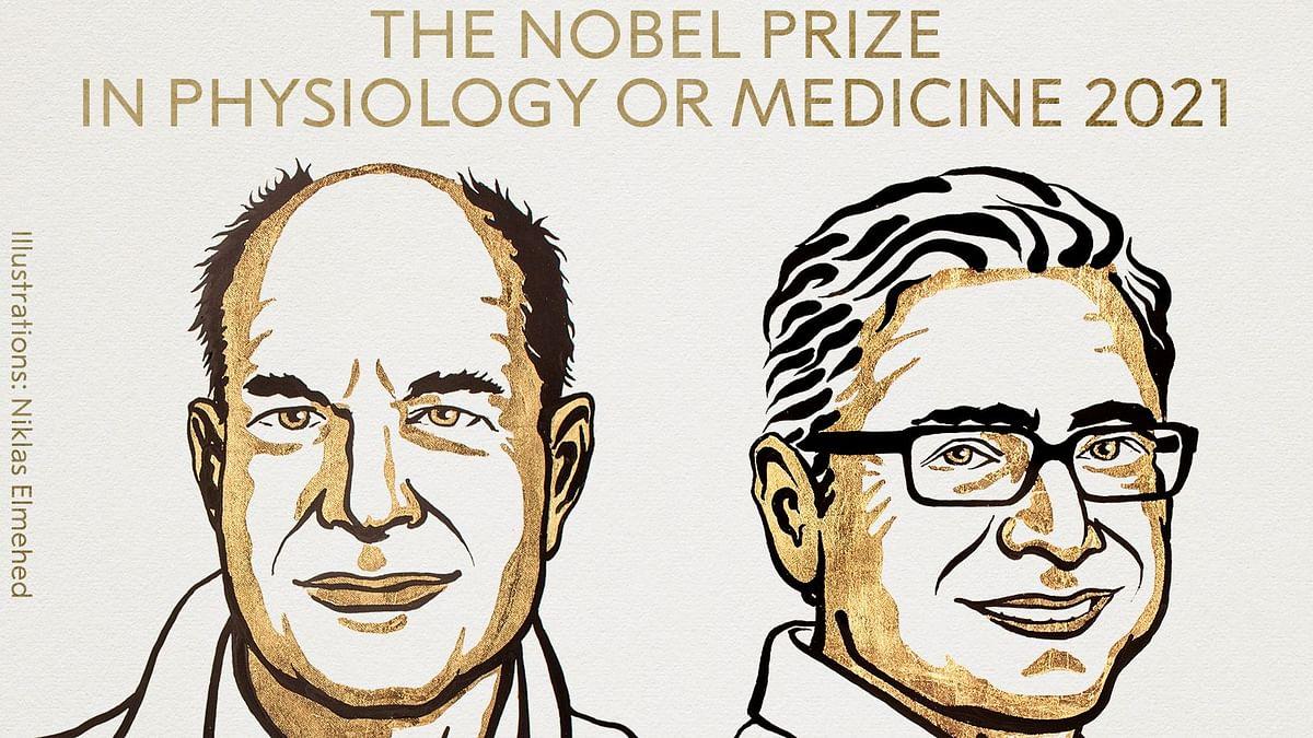Nobel Prize 2021: David Julius & Ardem Patapoutian Bag Award for Medicine