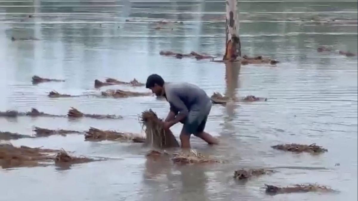 Varun Gandhi Writes to UP CM Amid Rains in Pilibhit, Several Villages Flooded