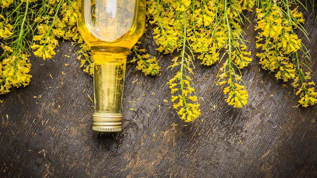Canola Oil May Worsen Memory, Cause Weight Gain: Study