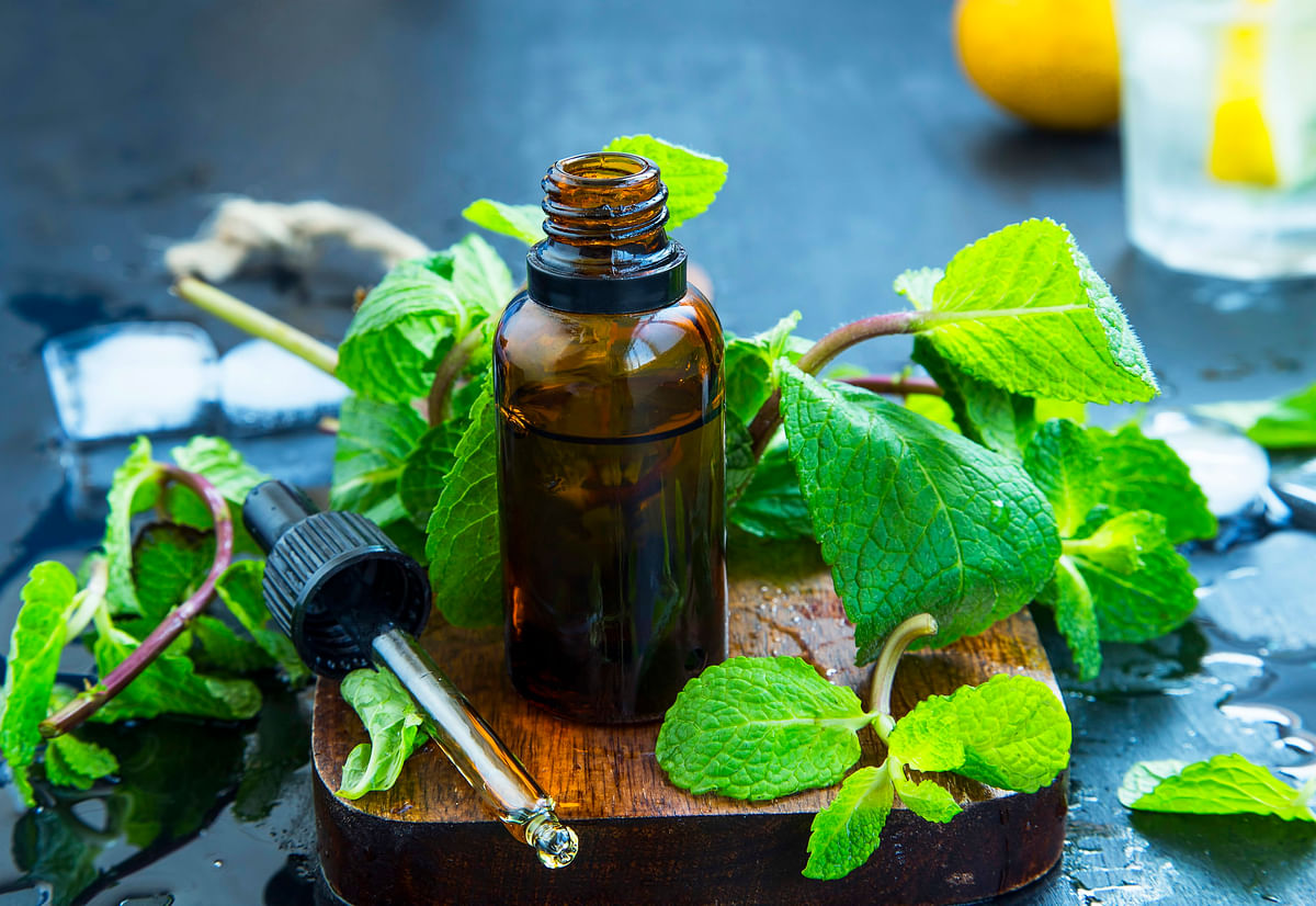 5 Best Essential Oils To Boost Your Immunity This Season