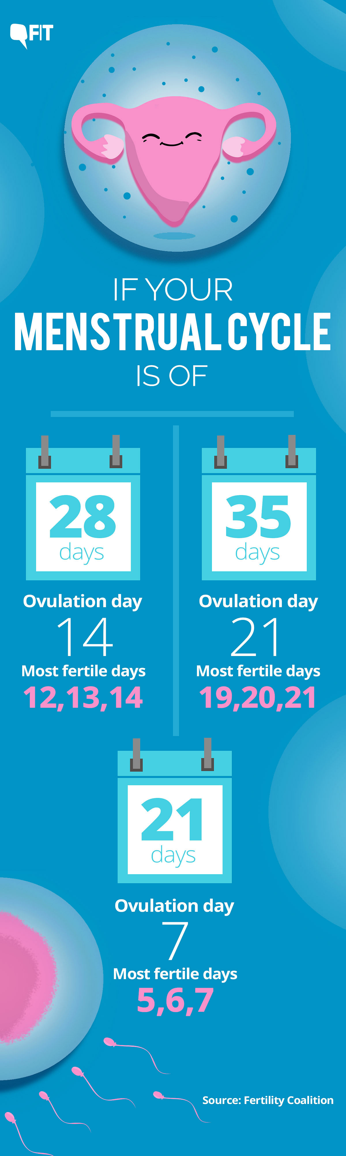 The chances of pregnancy increases by 27-33 percent in the three days leading to ovulation and decline rapidly immediately after.