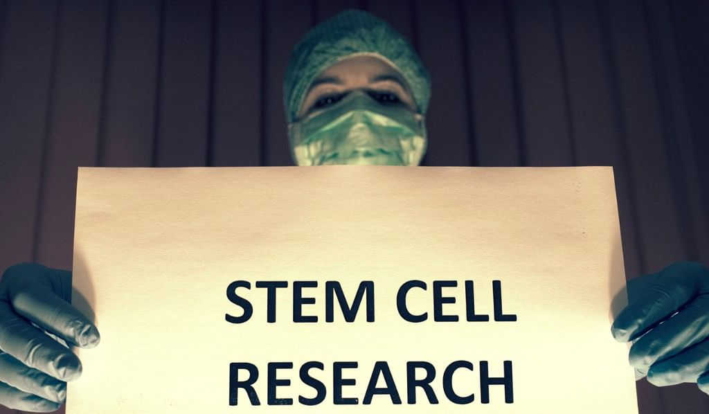 From Hair to Flesh: Is Stem Cell Therapy a Hope to Treat Diseases?