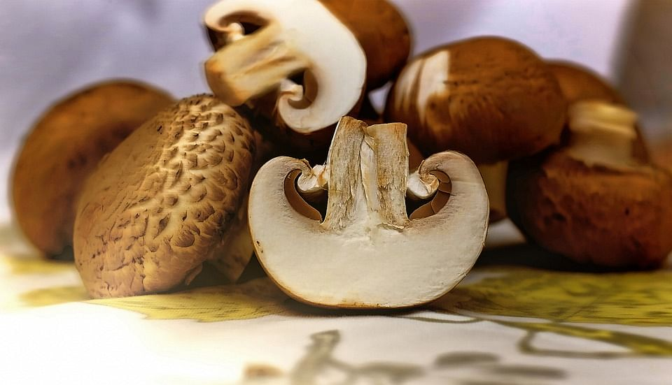 Mushrooms help beef up your immunity immensely.