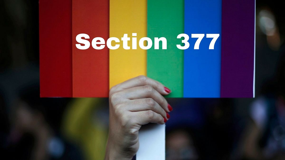 I briefly summarise Section 377 of the Indian Penal Code as a dispute between humanity and hypocrisy
