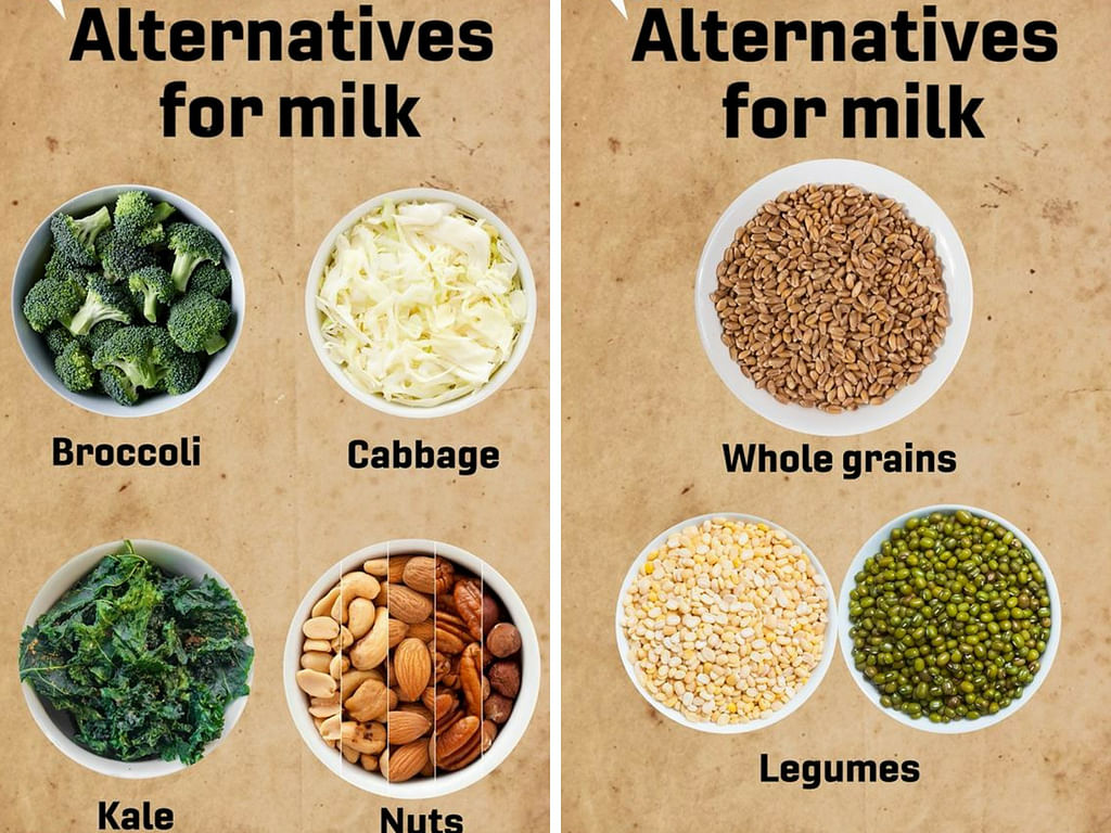 Is Milk Good Or Bad for Your Health? Find Out