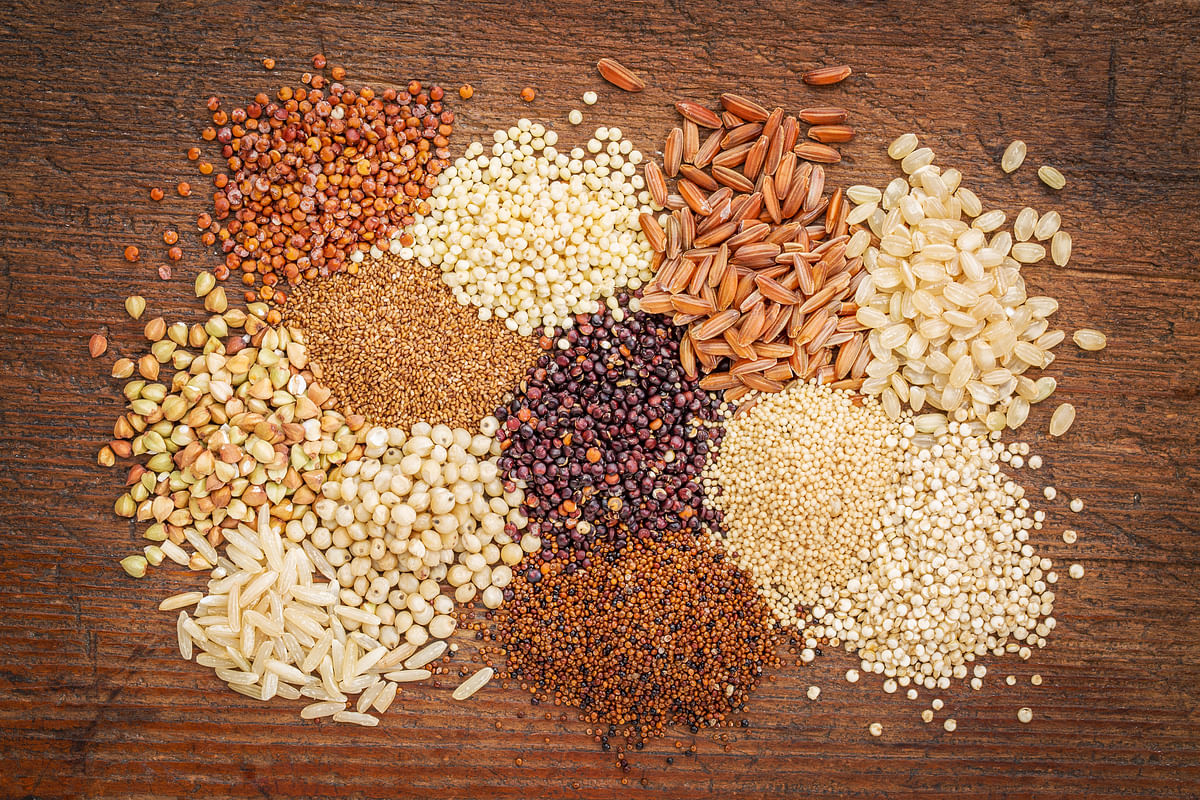 Millets are slowly finding its way into one's diet with a wide variety of recipes available.