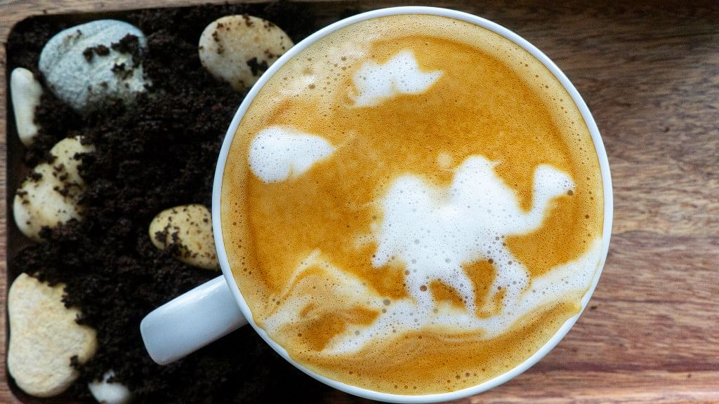 Decoded: Is Camel Milk  Superfood or Superfad?