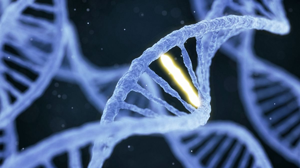Mysterious Rings of DNA May Contribute to Cancer in Children