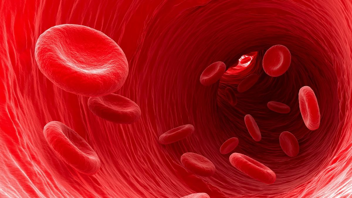 Blood Cancer Awareness Month: What to Know