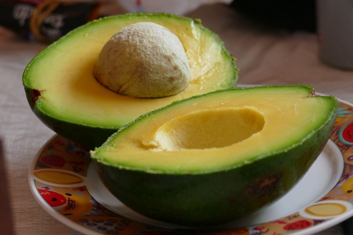 Avocado Seed Extract Shows Anti-Inflammatory Activity