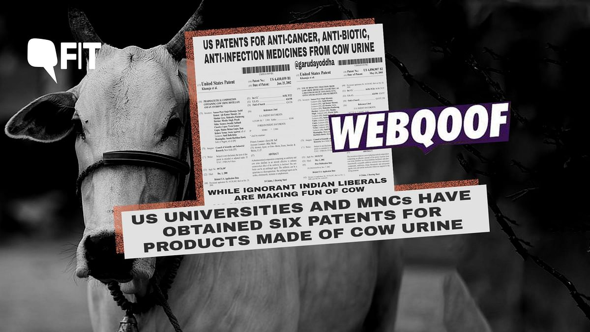 FIT WebQoof: US Patents For Medicines Containing Cow Urine