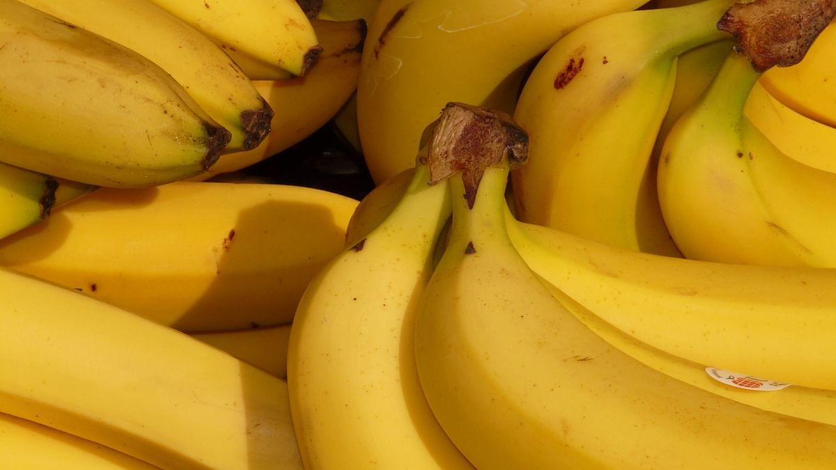Love Bananas? Experts Say It Might Go Extinct Soon