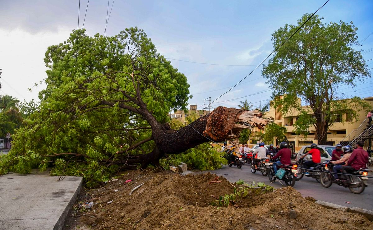 Cyclone Vayu: A Guide to Prepare for the Disaster