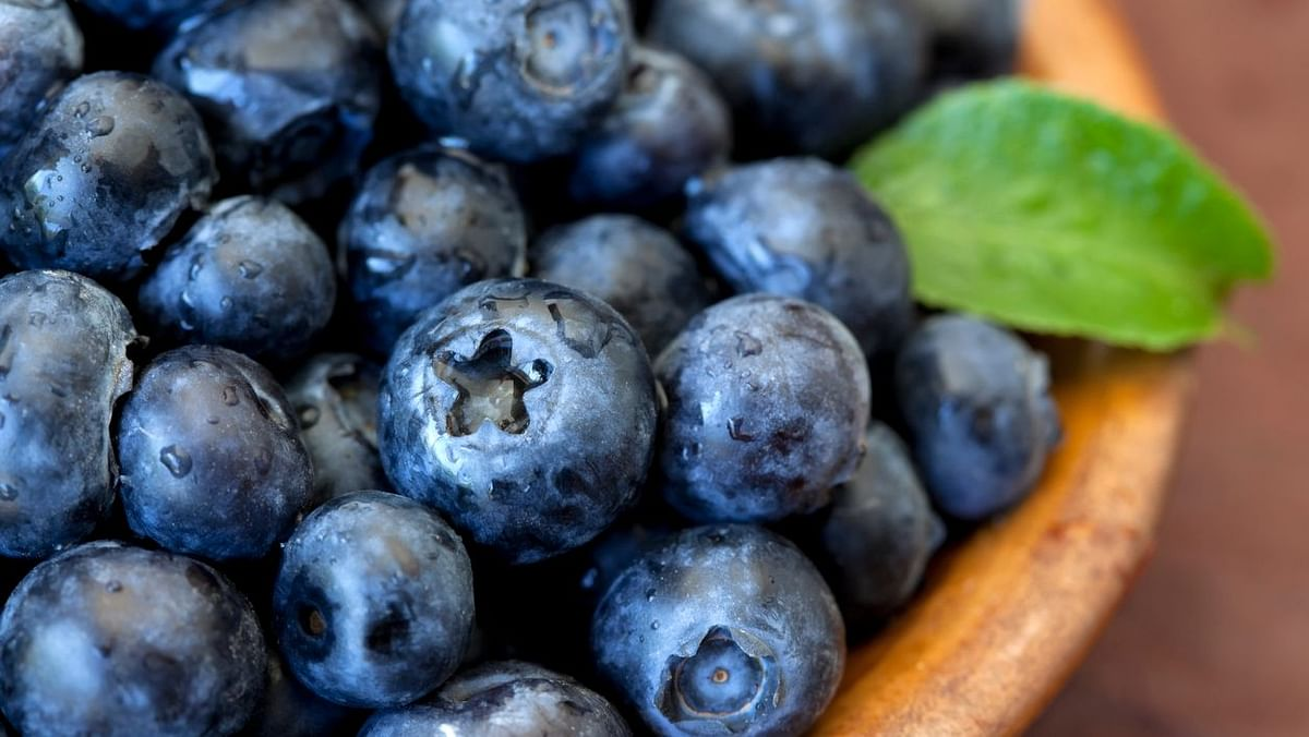 Blueberries and other berries should be included in diets to reduce the risk of cardiovascular disease.