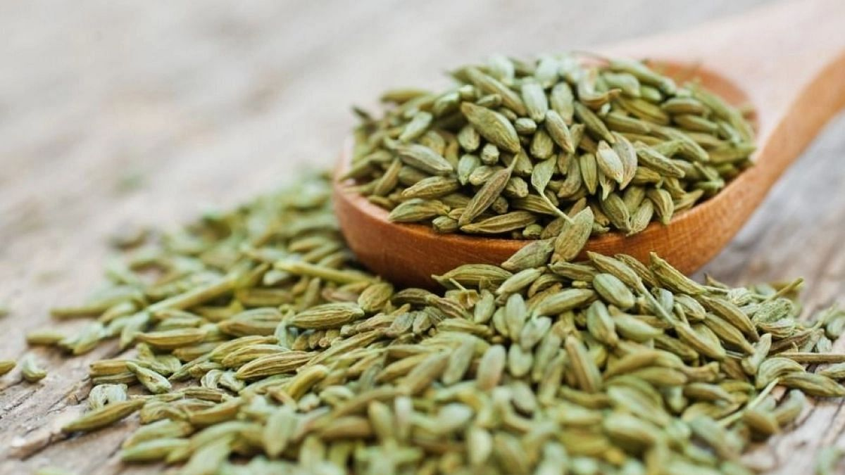 Home Remedies Using Saunf or Fennel Seeds: Fennel seeds are extremely nutritious. They contain lots of protein, dietary fiber, and essential minerals.