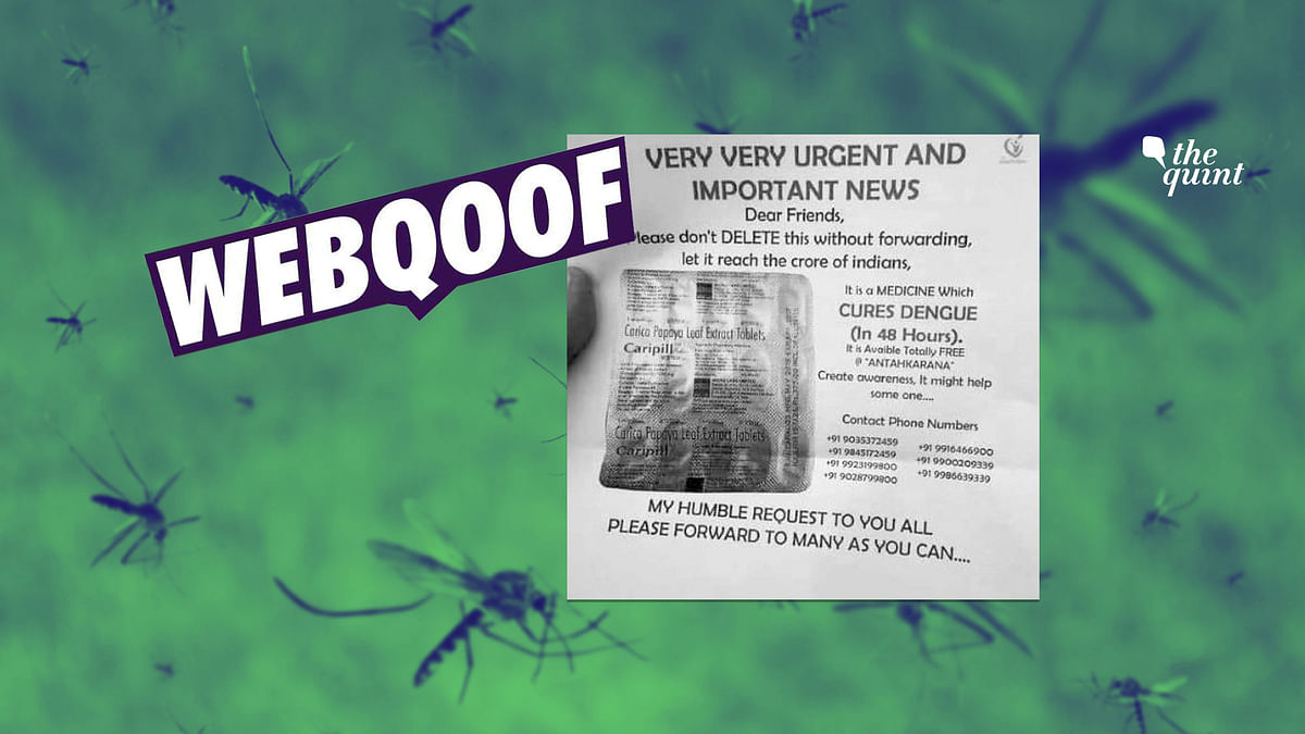 FIT Webqoof: No, There is No Medicine To Cure Dengue in 48 Hours