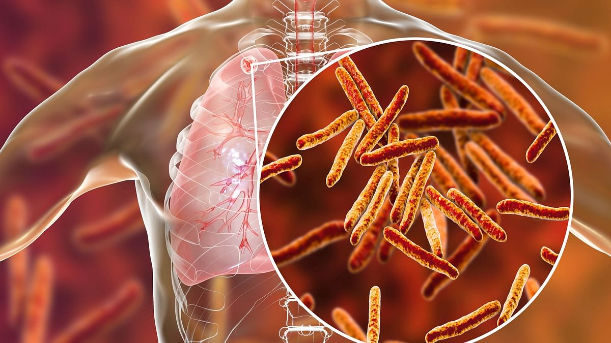 A New Approach to Improve Efficacy of TB Vaccine: Study
