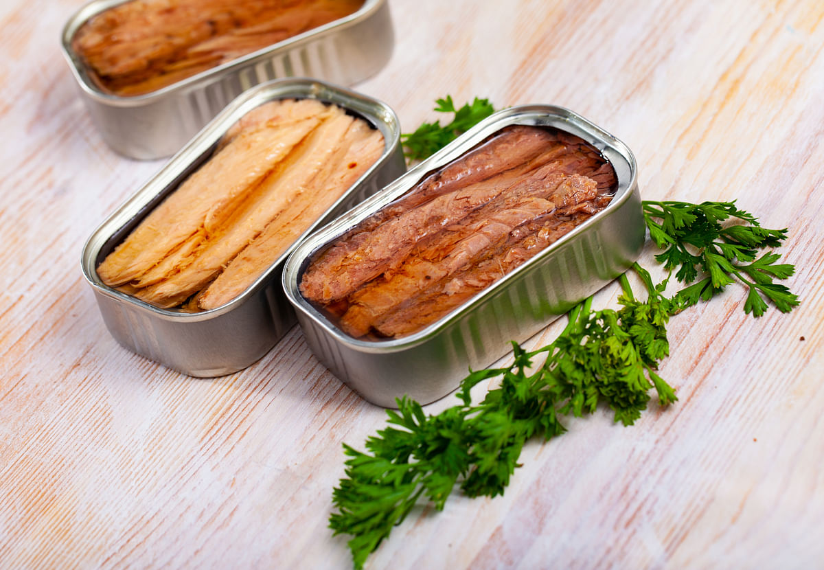 """<div class=""""paragraphs""""><p>Tuna and sardines are rich sources of protein.</p></div>"""