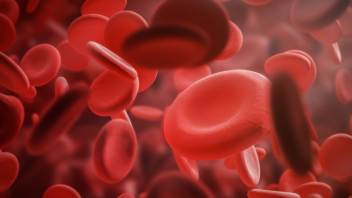 Let's Talk Men's Health: Men Get Anaemia Too