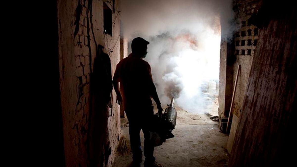 Has Delhi Really 'Defeated' Dengue like Kejriwal Claims?