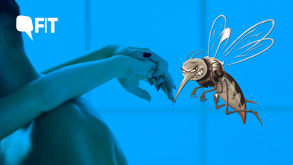 Decoding: Can Dengue be Sexually-Transmitted?