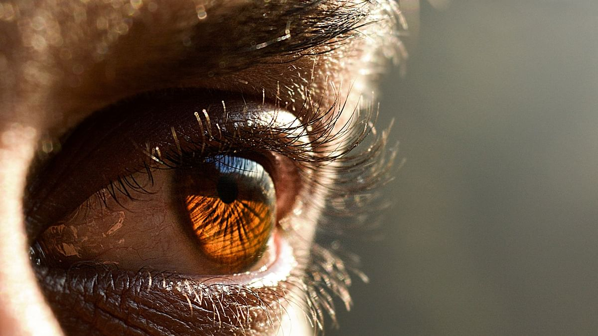 AMD causes impaired centre vision but normal peripheral vision