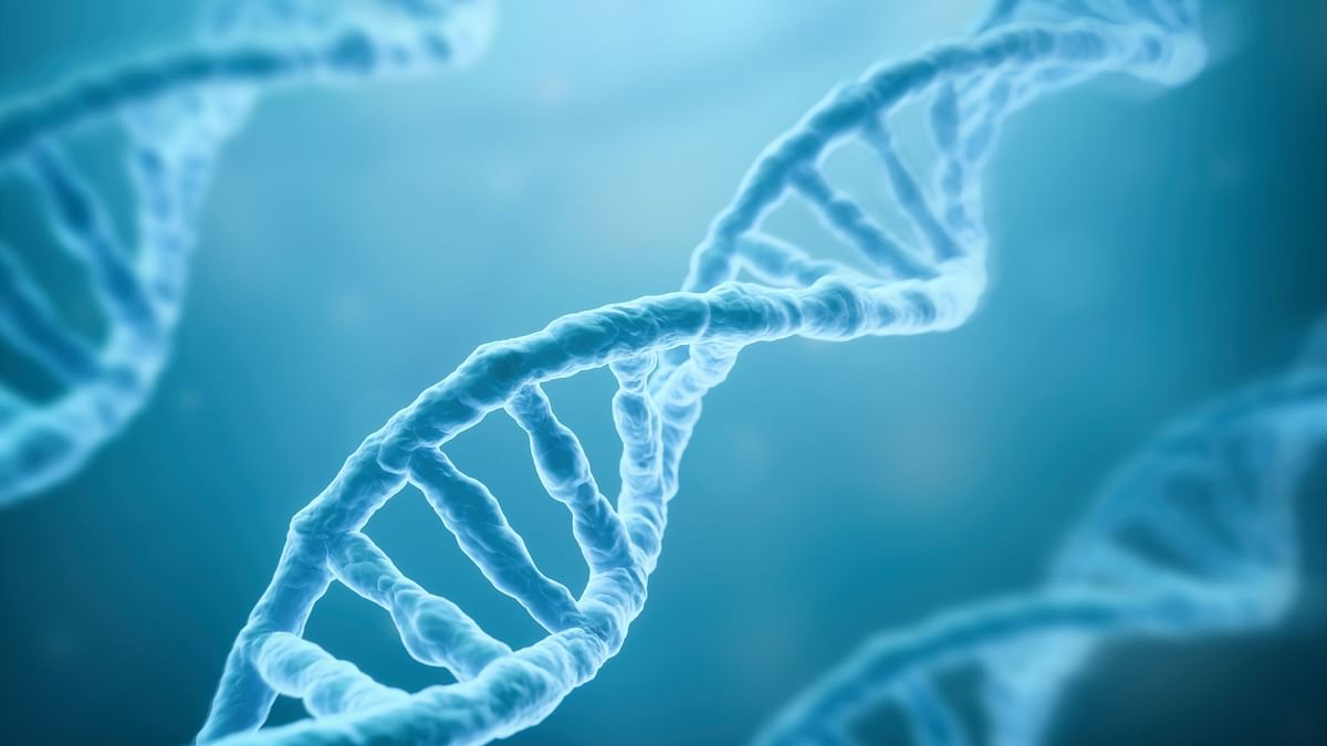 One of Four Genetic Conditions Put People at Autism Risk: Study