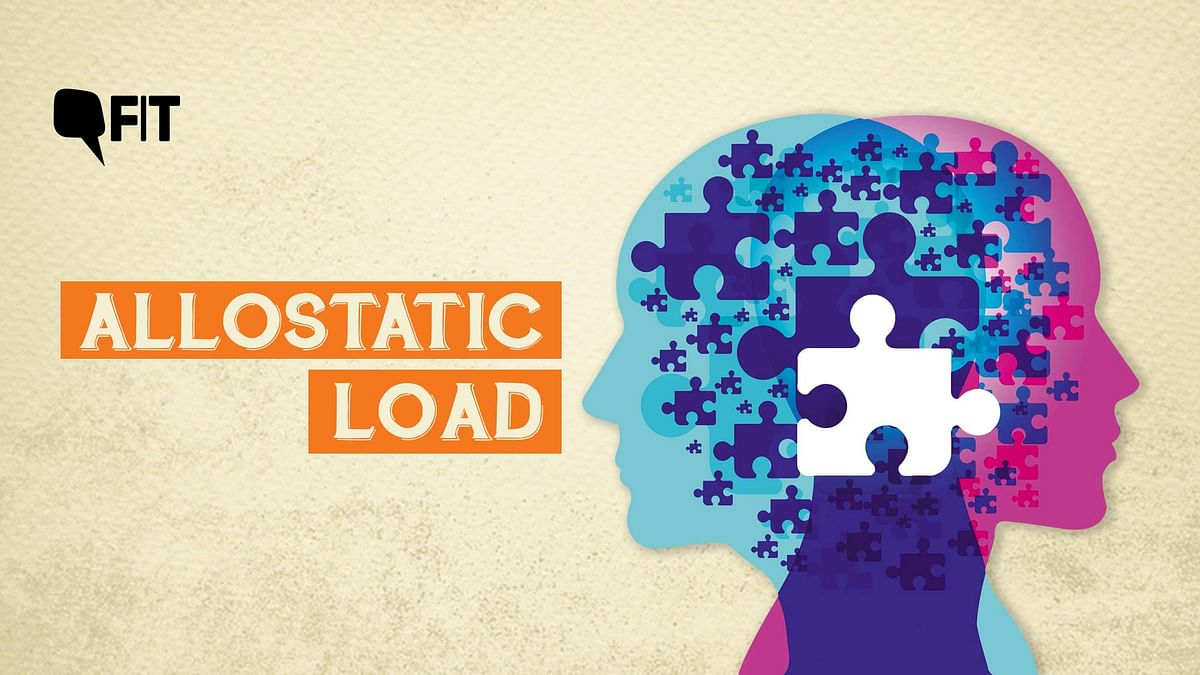 What is allostatic load?