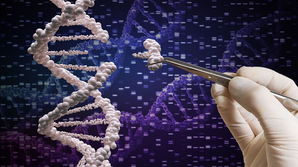 "What is CRISPR? A genome is the full set of genetic ""instructions"" that determine how an organism will develop."