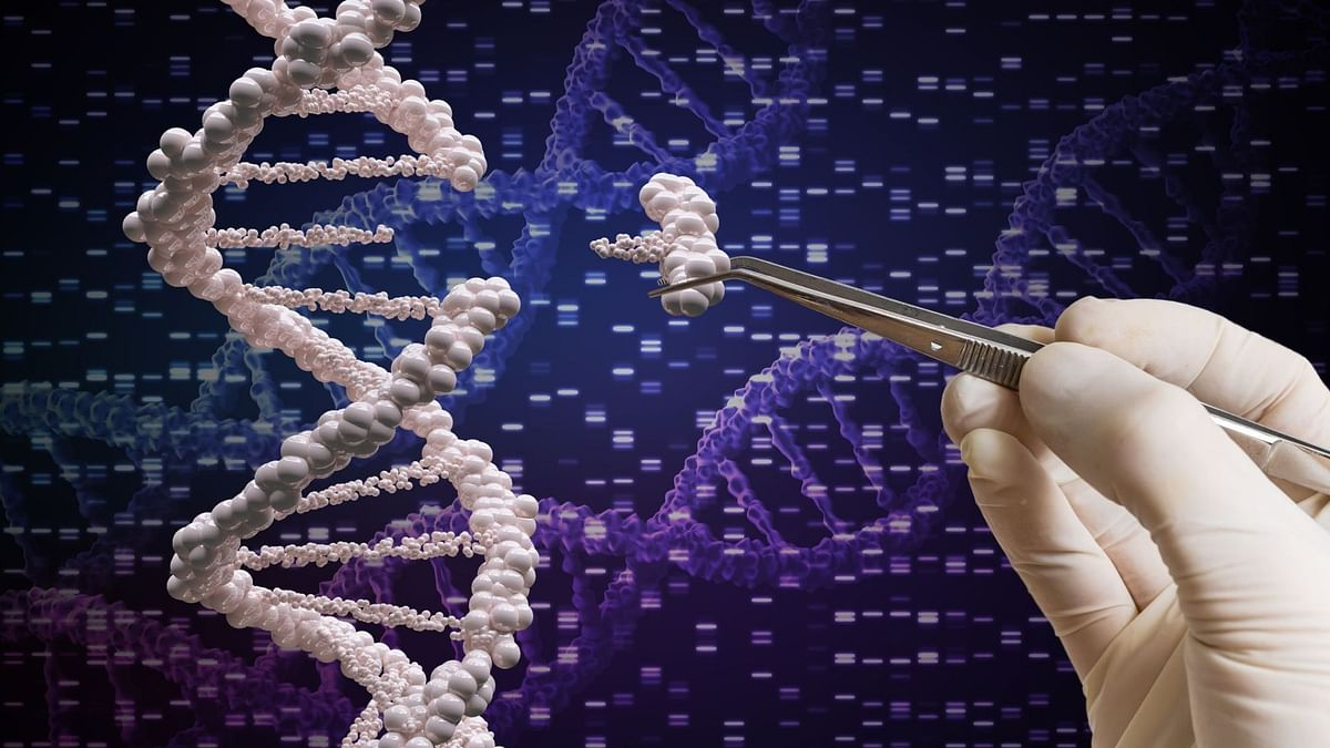 Cluster-Based Genome Sequencing to Detect Virus Spike:NCDC Chief