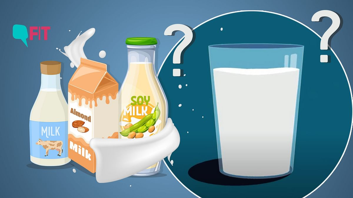 Video | Let's Talk About Milk: Which Type Is Best For You?