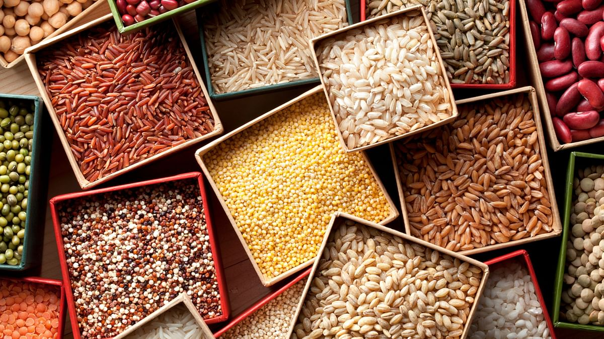 """<div class=""""paragraphs""""><p>Millets, a regular feature in Indian cooking, slowly disappeared with the dominance of rice and wheat.</p></div>"""