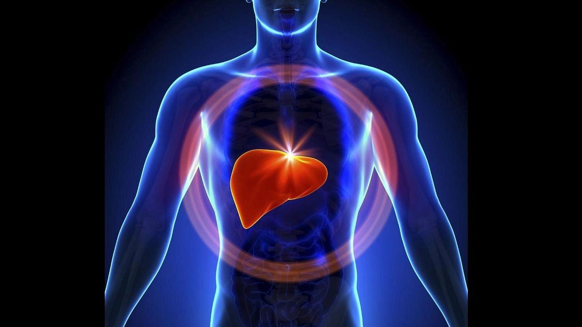 "<div class=""paragraphs""><p>World Hepatitis Day 2021: हेपेटाइटिस क्या है, कारण और बचाव</p></div>"